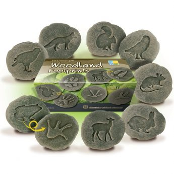 Eight double-sided stones with footprint on one side animal on the other.   (approx 3 inches)