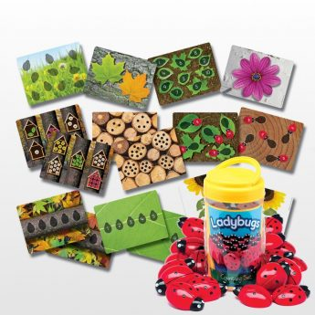 Early math resource - ladybugs counting stones and activity cards for numbers 0-20